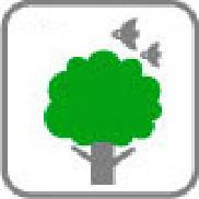 紙資源となる森林の保全に貢献する。