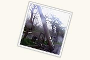 2003年台風14号(マエミー)の脅威